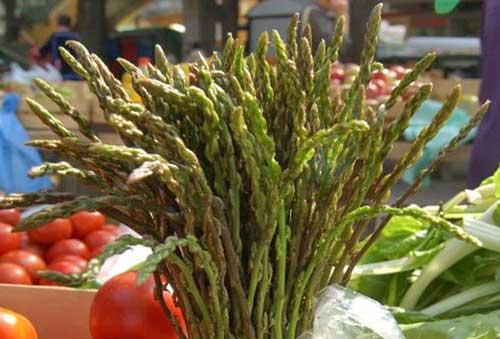 Montopoli di Sabina: prodotti tipici e tradizione alla Sagra dell'Asparago Selvatico