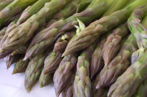 Ricette, asparagi con salsa allo yogurt, aneto e limone
