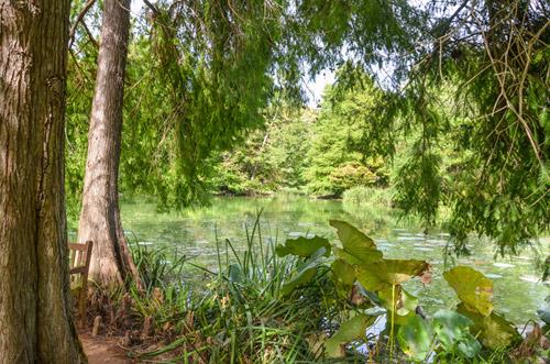 Ardea. Gli appuntamenti di Ottobre ai Giardini della Landriana