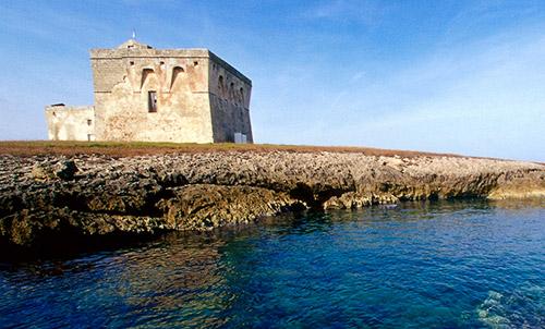 Una veduta di Torre Guaceto (fonte web)