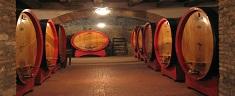 Brunello di Montalcino: Siena in un bicchiere