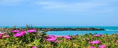 Le 8 spiagge (+ una) più belle del Lazio